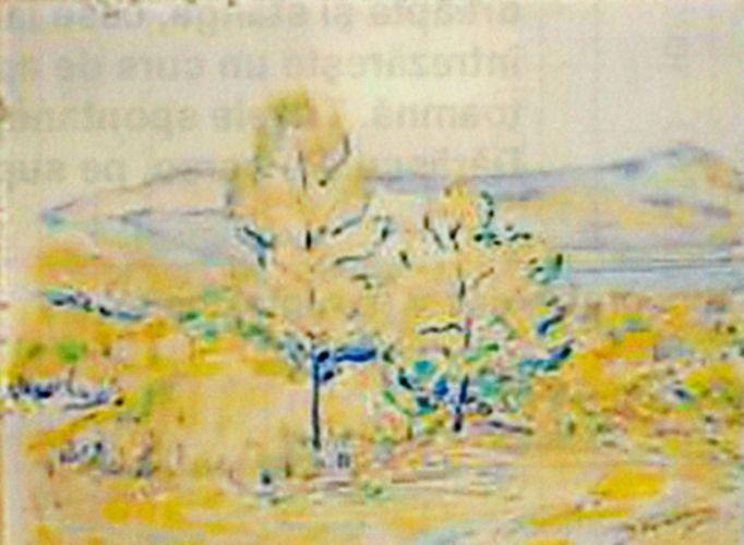 Pictură - Dărăscu, Nicolae; Peisaj (Peisaj panoramic) - Muzeul de Artă - TULCEA (Patrimoniul Cultural National Mobil din Romania. Ordin de clasare: 2216/02.06.2009 - Fond)