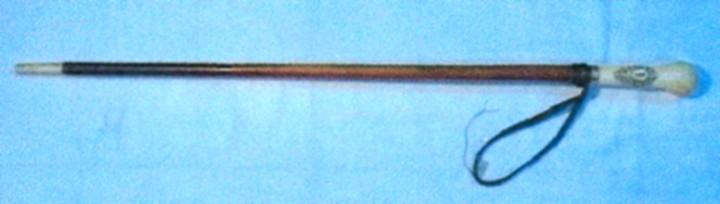 Baston al lui Mihai Eminescu - Muzeul Judeţean Argeş - PITEŞTI (Patrimoniul Cultural National Mobil din Romania. Ordin de clasare: 2604/30.10.2007 - Tezaur)